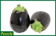 melanzana nera ovale ibrida
