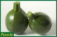 zucchina onda verde ibrida